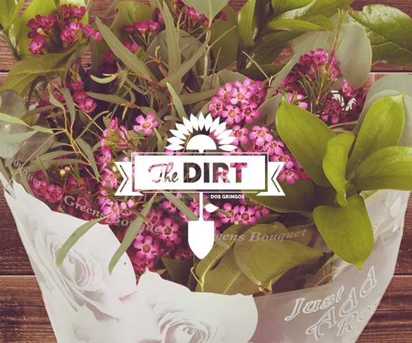 The Dirt - Just Add LOVE!