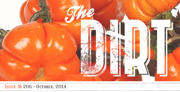 The Dirt - October 2014