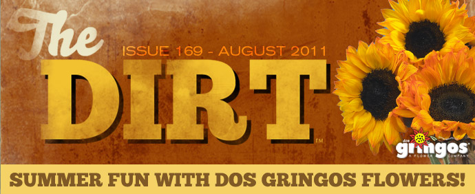 The Dirt - August 2011