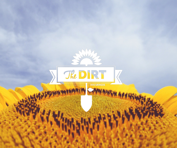 The  Dirt - August Awards