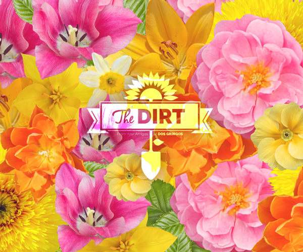 The Dirt - Spring is nature's way of saying, Let's party!