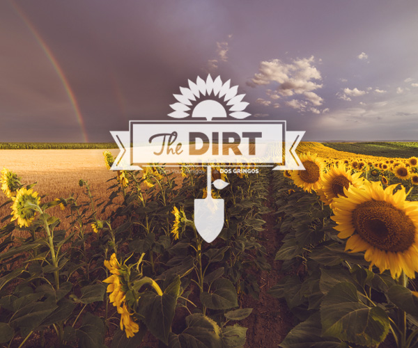 The Dirt - Holy Weather Batman!